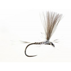 Sandro Soldarini Dry Fly 1