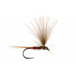 Sandro Soldarini Dry Fly 2