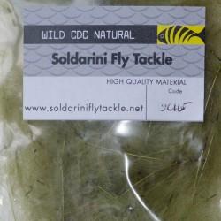 Soldarini - Wild CDC Olive