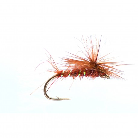 Brown Shipman's Parachute