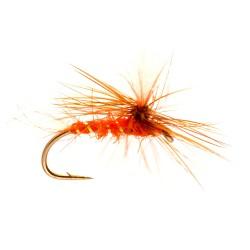 Orange Shipman's Parachute