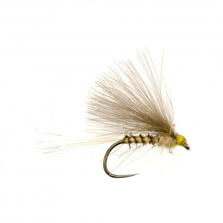 Quill Olive CDC F Fly